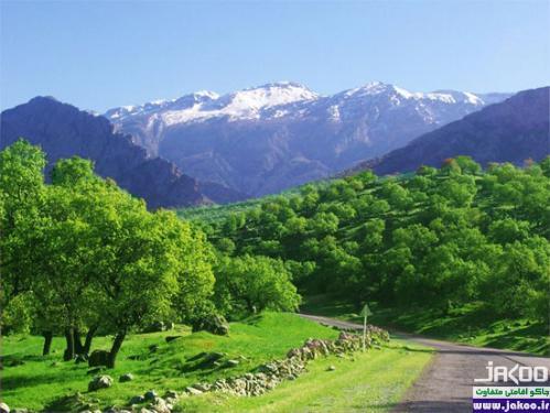 طبیعت زیبای كهگیلويه و بويراحمد