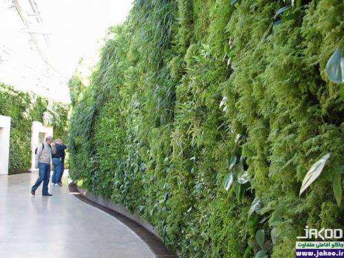 باغچه های ستونی داخل خانه