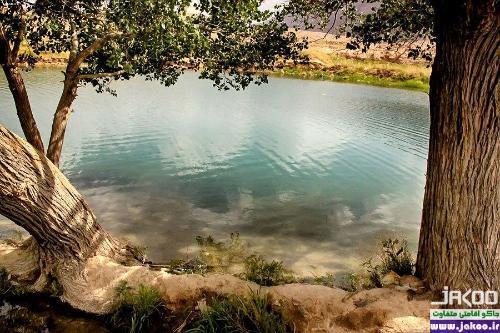 طبیعت مرموز غربال بیز در منطقه بیابانی یزد