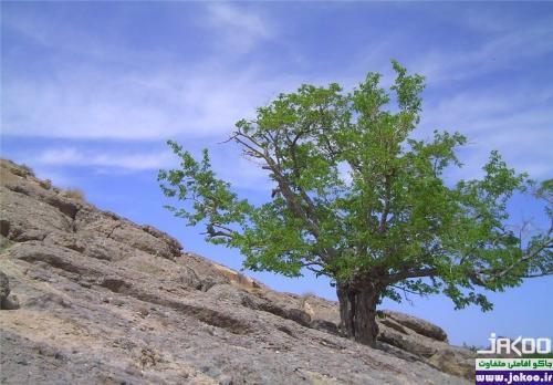 چشمه جوشان و دریاچه غربالبیز در شهرستان مهریز یزد