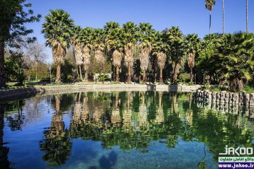 یکی از باغهای گیاهشناسی جهان به نام باغ چشمه بلقیس در ایران