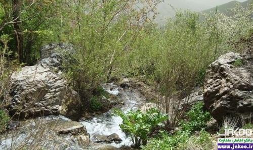 چشمه های دیدنی و رودخانه کن منطقه 5 تهران
